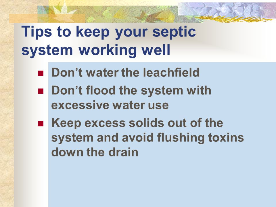Tips to keep your septic system working well Don't water the leachfield Don't flood the system with excessive water use Keep excess solids out of the system and avoid flushing toxins down the drain