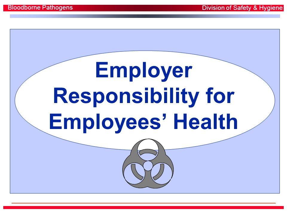 Employer Responsibility for Employees' Health Bloodborne Pathogens Division of Safety & Hygiene