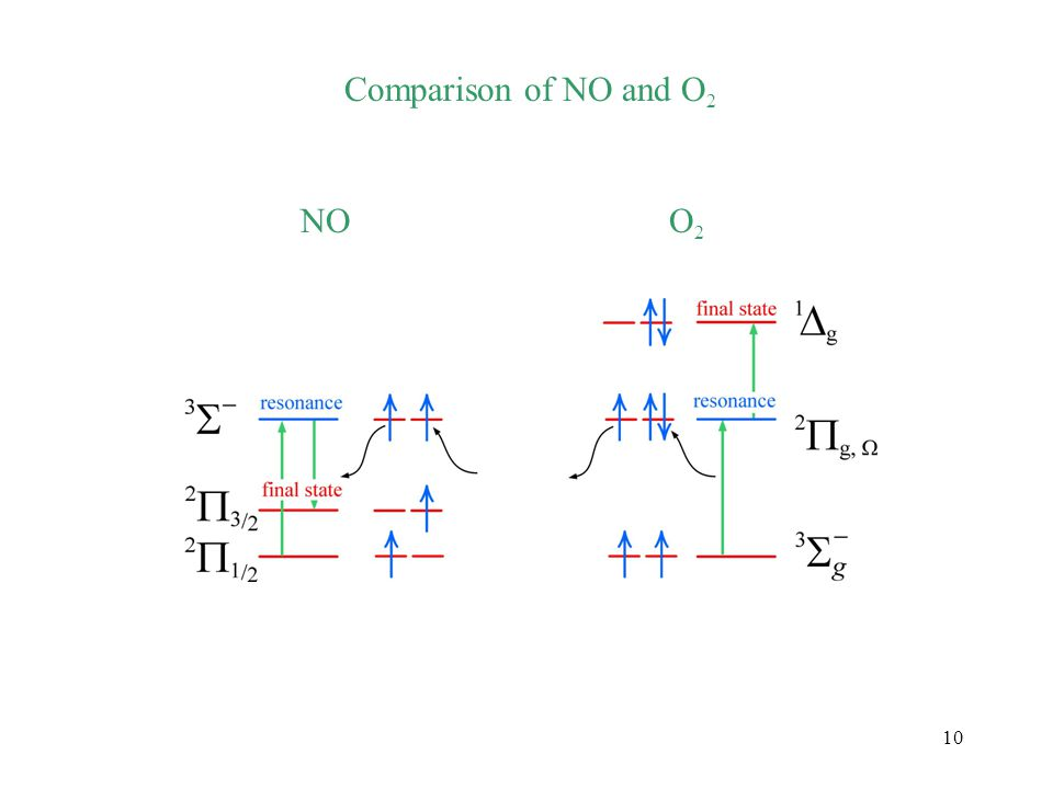 10 Comparison of NO and O 2 NOO2O2