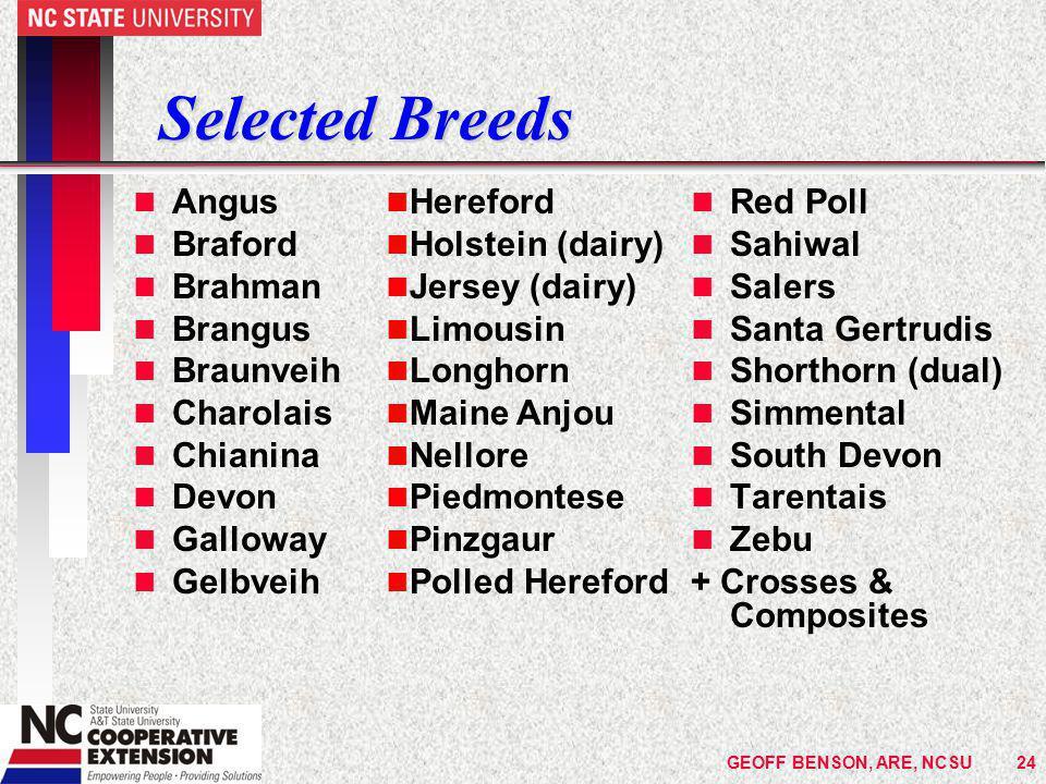 GEOFF BENSON, ARE, NCSU24 Selected Breeds n Angus n Braford n Brahman n Brangus n Braunveih n Charolais n Chianina n Devon n Galloway n Gelbveih n Red Poll n Sahiwal n Salers n Santa Gertrudis n Shorthorn (dual) n Simmental n South Devon n Tarentais n Zebu + Crosses & Composites Hereford Holstein (dairy) Jersey (dairy) Limousin Longhorn Maine Anjou Nellore Piedmontese Pinzgaur Polled Hereford
