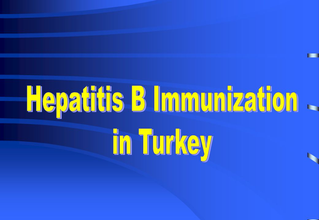 Viral Hepatitis Prevention Society A local NGO with 1,200 members Communication networks targetting health personnel all around the country Important contribution towards the implementation of universal newborn immunization in 1998.