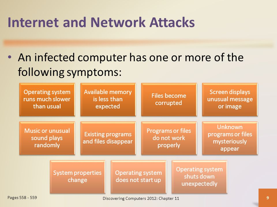 Internet and Network Attacks Discovering Computers 2012: Chapter 11 10 Page 559 Figure 11-3
