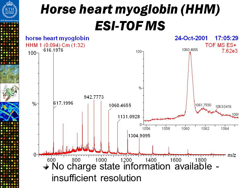 Horse heart myoglobin (HHM) ESI-TOF MS No charge state information available - insufficient resolution