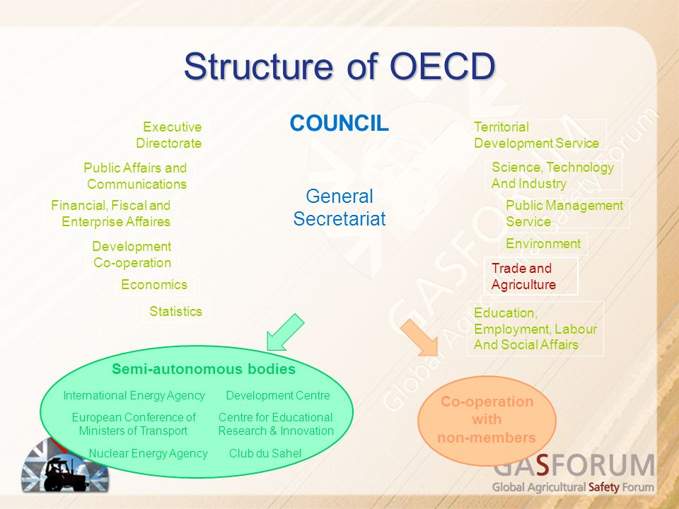 Who drives OECD's Work?