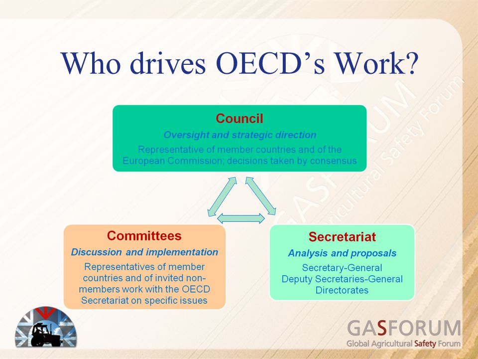 Role of the Secretariat Coordination between the countries: –Production and distribution of official documents –Organisation of meetings –Ensures research progress Develop and implement the programme of work: ensure its pertinence Manage the budget Evaluates candidate countries to join Liaise with international organisations