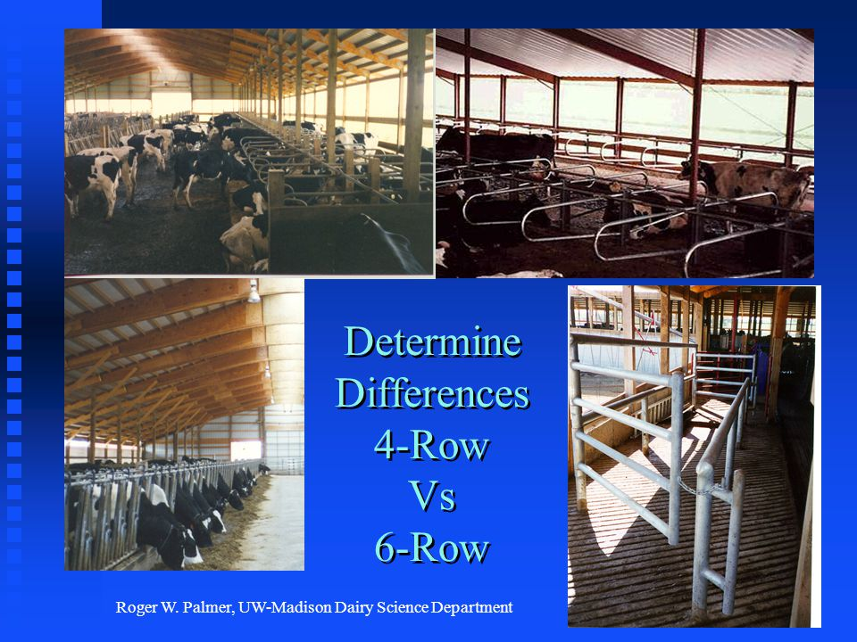 Roger W. Palmer, UW-Madison Dairy Science Department Determine Differences 4-Row Vs 6-Row