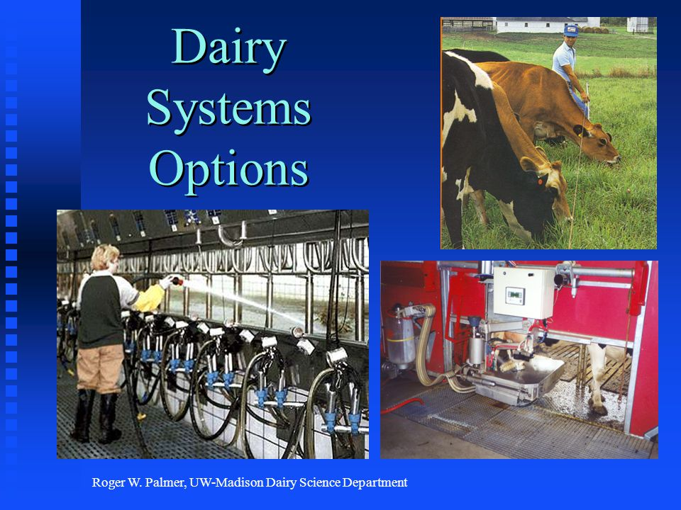 Roger W. Palmer, UW-Madison Dairy Science Department Dairy Systems Options