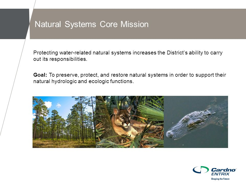 Protecting water-related natural systems increases the District's ability to carry out its responsibilities.