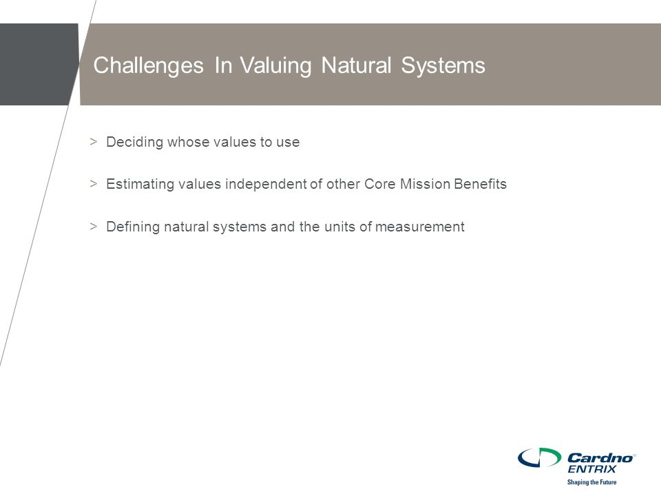 >Deciding whose values to use >Estimating values independent of other Core Mission Benefits >Defining natural systems and the units of measurement Challenges In Valuing Natural Systems