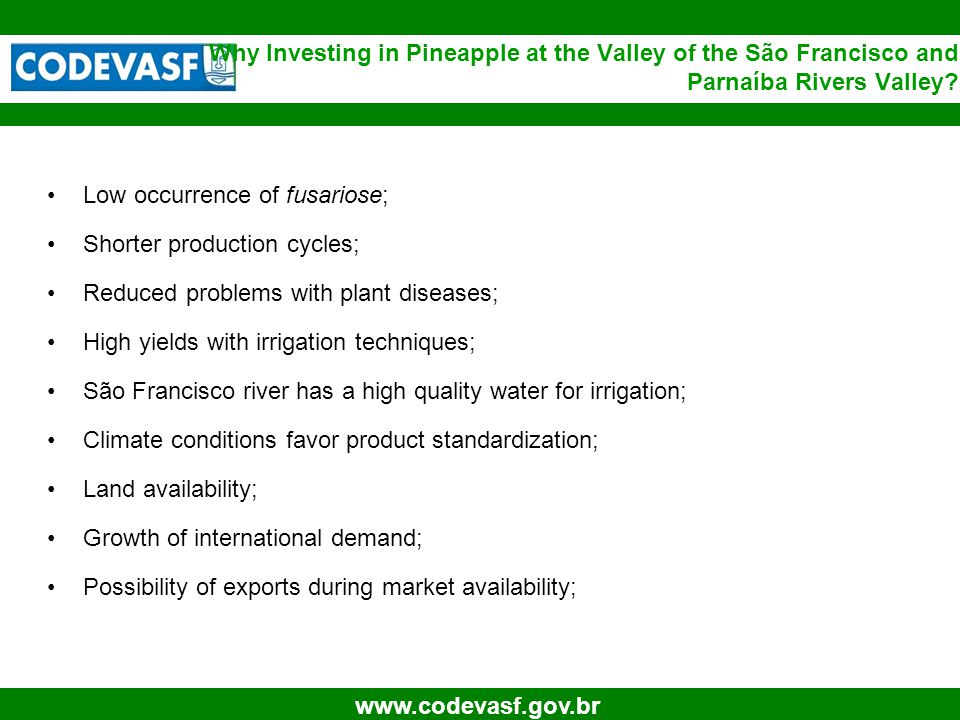 6 www.codevasf.gov.br Low occurrence of fusariose; Shorter production cycles; Reduced problems with plant diseases; High yields with irrigation techniques; São Francisco river has a high quality water for irrigation; Climate conditions favor product standardization; Land availability; Growth of international demand; Possibility of exports during market availability; Why Investing in Pineapple at the Valley of the São Francisco and Parnaíba Rivers Valley