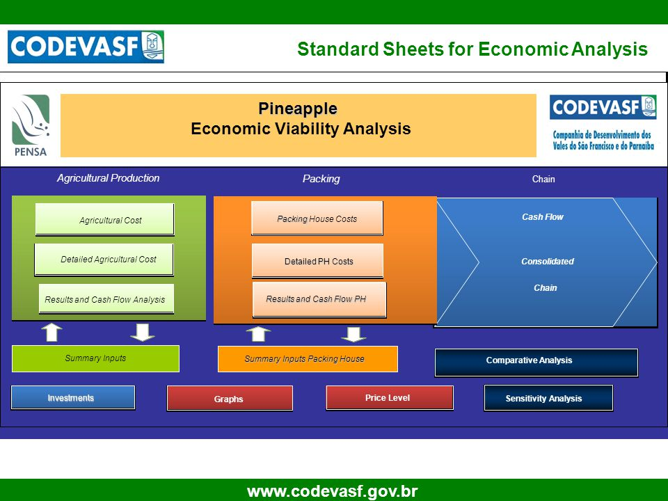 9 www.codevasf.gov.br Standard Sheets for Economic Analysis Pineapple Economic Viability Analysis Investments Graphs Cash Flow Consolidated Chain Agricultural Production Packing Detailed PH Costs Detailed PH Costs Results and Cash Flow PH Detailed Agricultural Cost Results and Cash Flow Analysis Chain Summary Inputs Summary Inputs Packing House Agricultural Cost Packing Packing House Costs Comparative Analysis Sensitivity Analysis Price Level