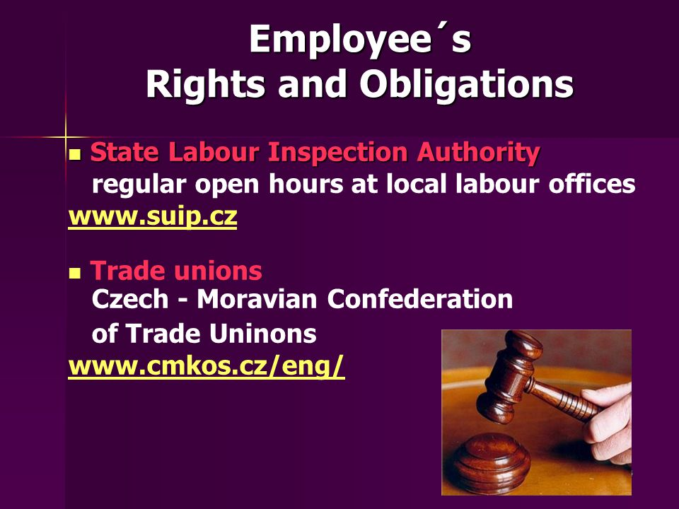 24 Employee´s Rights and Obligations State Labour Inspection Authority State Labour Inspection Authority regular open hours at local labour offices www.suip.cz Trade unions Czech - Moravian Confederation of Trade Uninons www.cmkos.cz/eng/