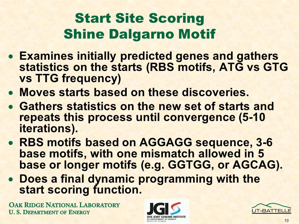 19 Start Site Scoring Shine Dalgarno Motif  Examines initially predicted genes and gathers statistics on the starts (RBS motifs, ATG vs GTG vs TTG frequency)  Moves starts based on these discoveries.