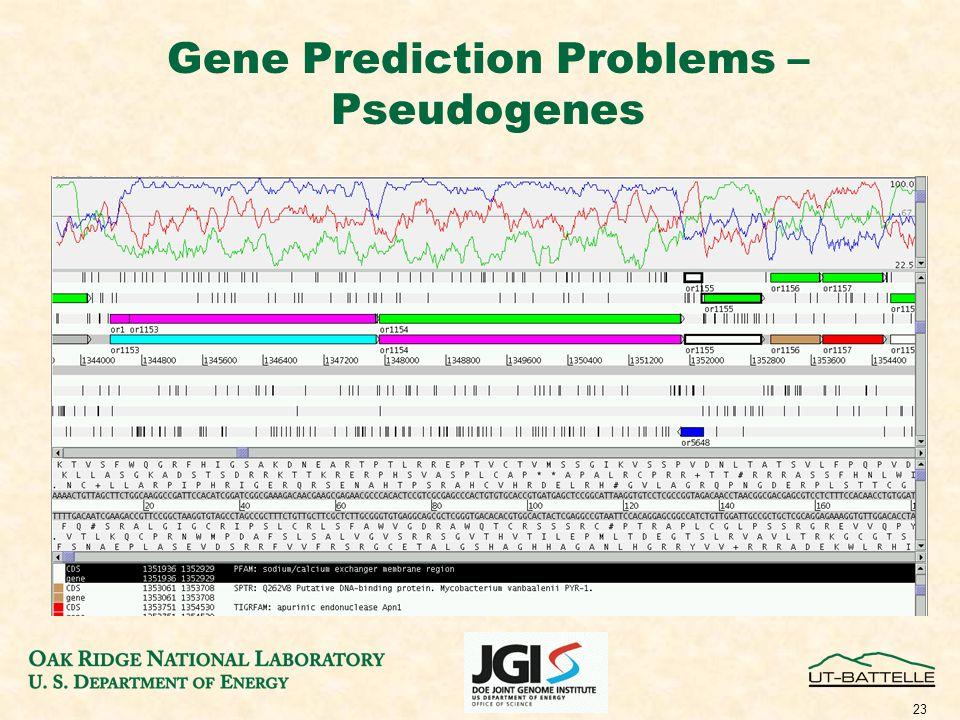 23 Gene Prediction Problems – Pseudogenes