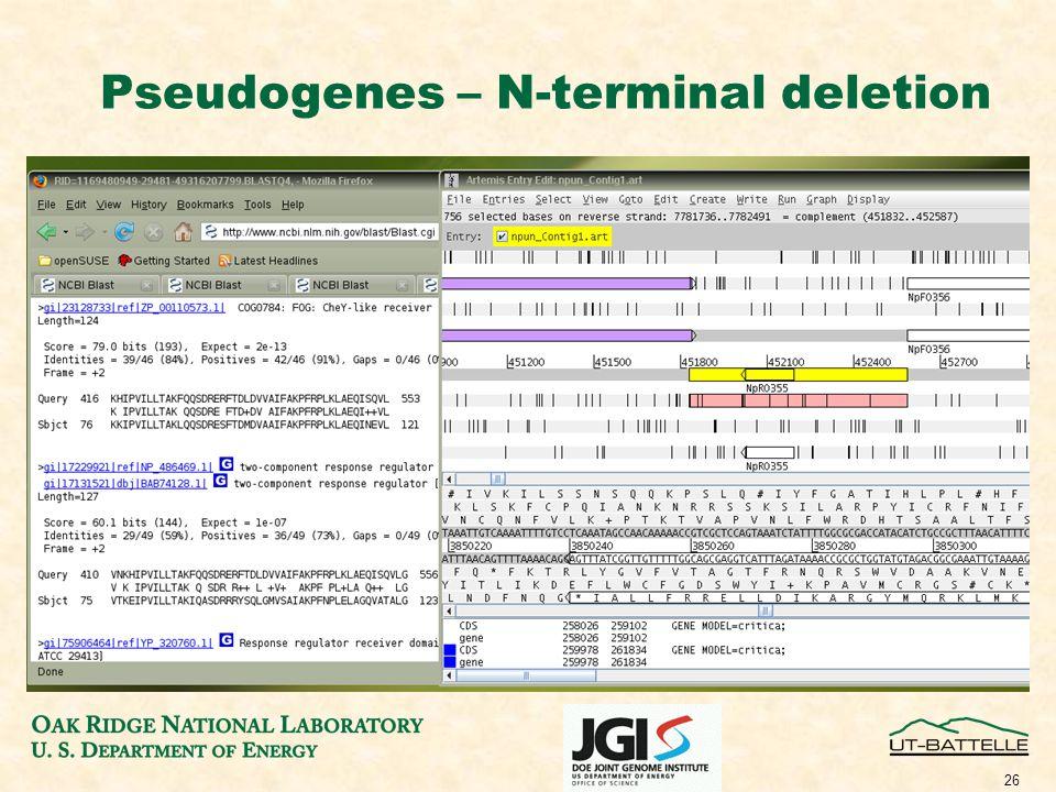 26 Pseudogenes – N-terminal deletion