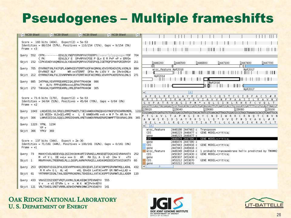 28 Pseudogenes – Multiple frameshifts