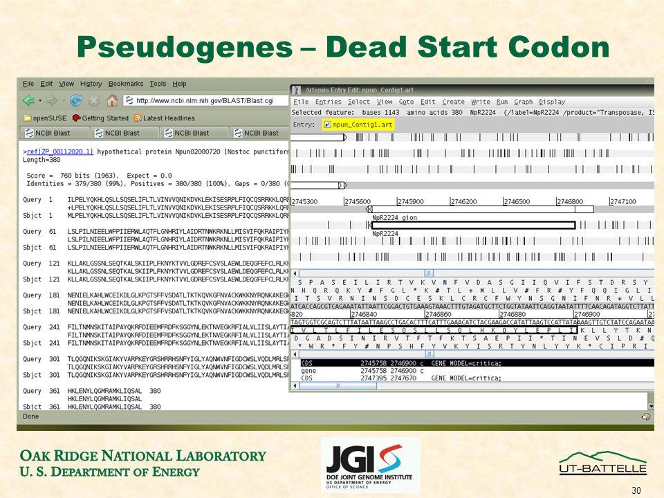 30 Pseudogenes – Dead Start Codon