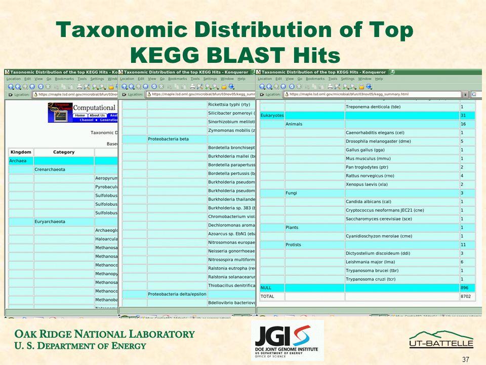 37 Taxonomic Distribution of Top KEGG BLAST Hits