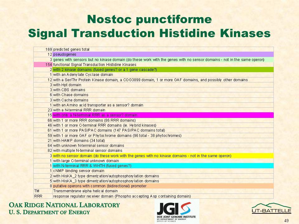 49 Nostoc punctiforme Signal Transduction Histidine Kinases