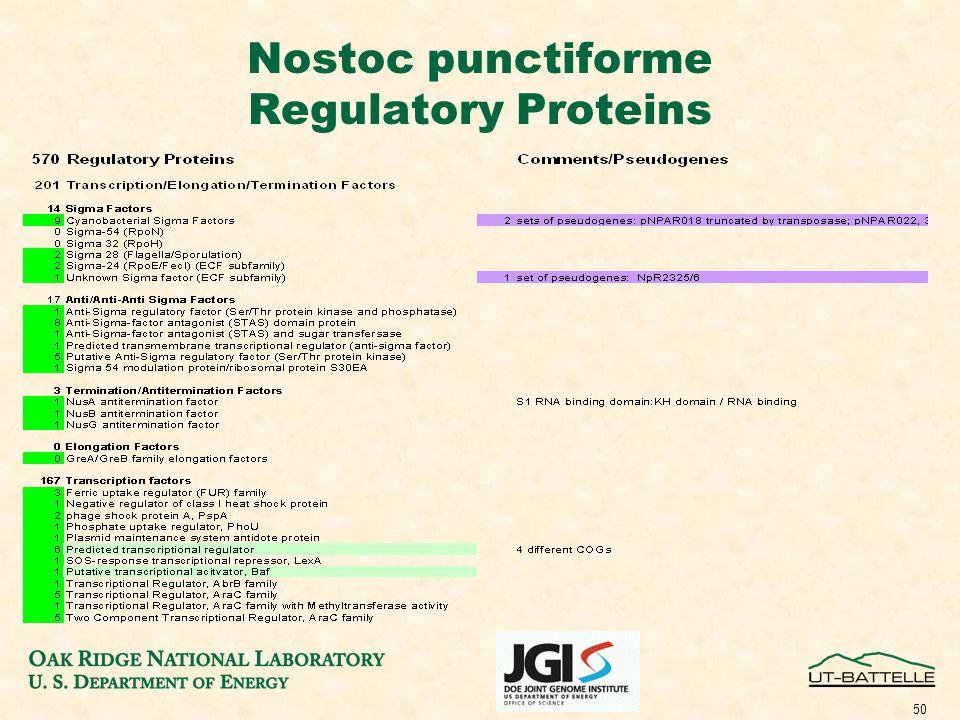 50 Nostoc punctiforme Regulatory Proteins