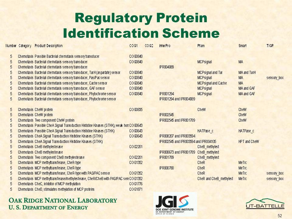 52 Regulatory Protein Identification Scheme