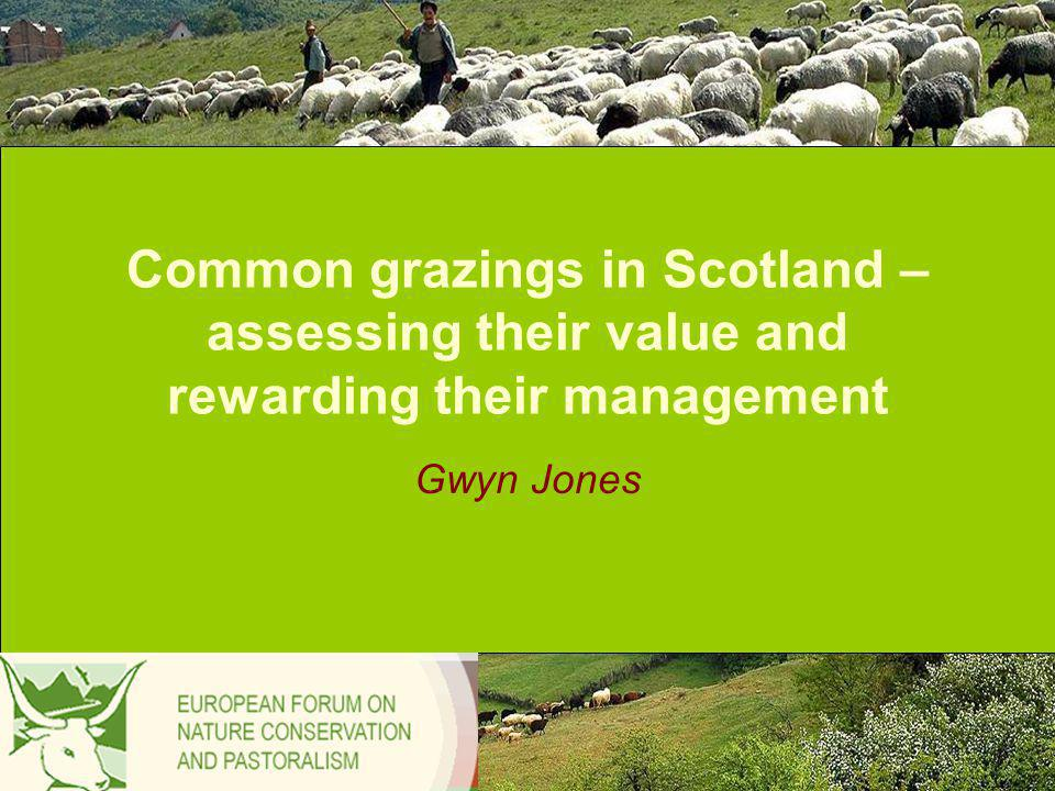 Common grazings in Scotland – assessing their value and rewarding their management Gwyn Jones