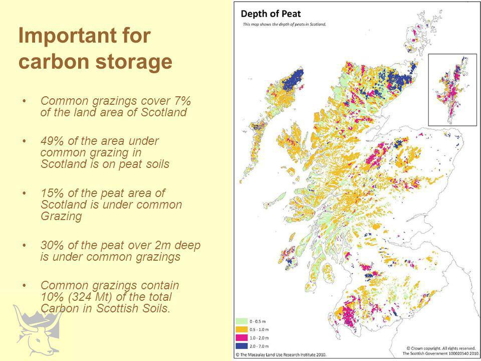 Important for carbon storage Common grazings cover 7% of the land area of Scotland 49% of the area under common grazing in Scotland is on peat soils 15% of the peat area of Scotland is under common Grazing 30% of the peat over 2m deep is under common grazings Common grazings contain 10% (324 Mt) of the total Carbon in Scottish Soils.