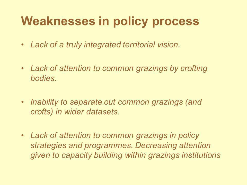Weaknesses in policy process Lack of a truly integrated territorial vision.