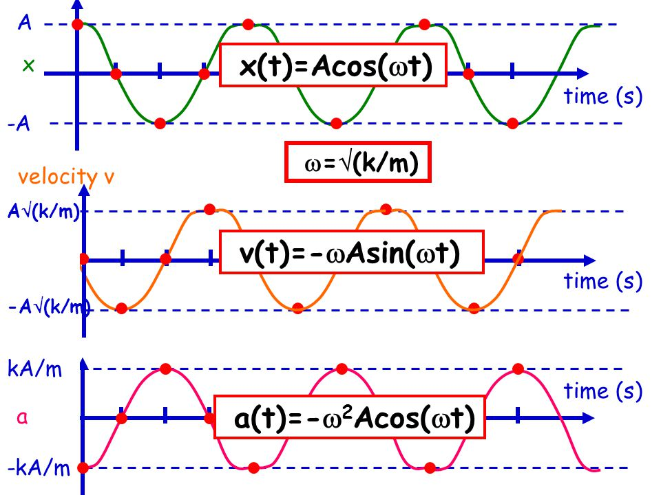 A -A velocity v x x(t)=Acos(  t) v(t)=-  Asin(  t) a(t)=-  2 Acos(  t)  =  (k/m) A  (k/m) -A  (k/m) -kA/m a kA/m time (s)