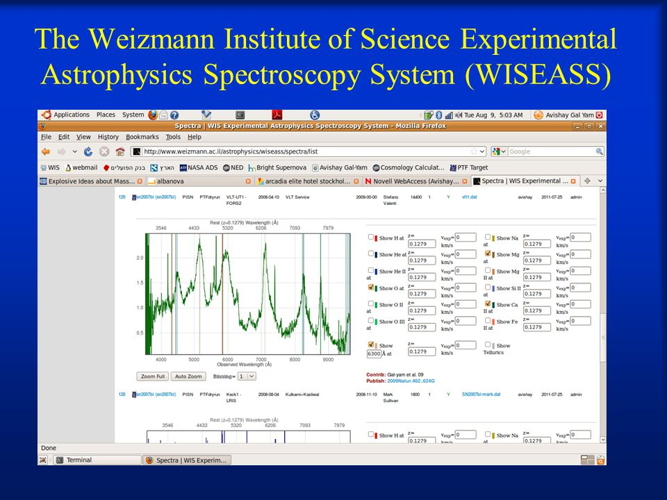 The Weizmann Institute of Science Experimental Astrophysics Spectroscopy System (WISEASS)