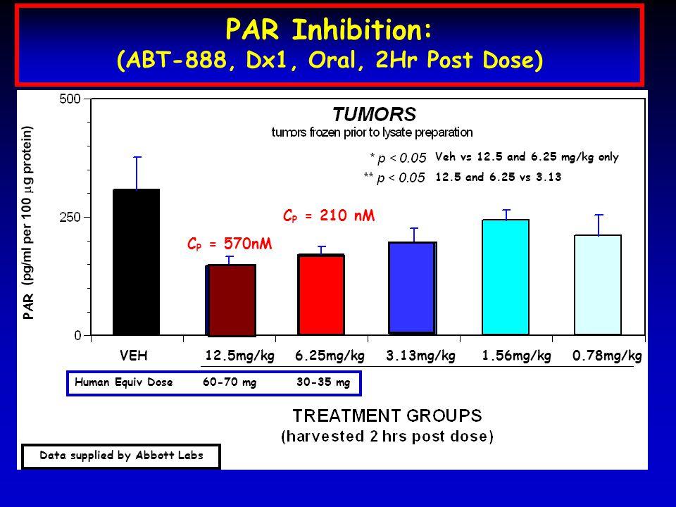 C P = 570nM C P = 210 nM PAR Inhibition: (ABT-888, Dx1, Oral, 2Hr Post Dose) Human Equiv Dose 60-70 mg 30-35 mg PAR VEH 12.5mg/kg 6.25mg/kg 3.13mg/kg 1.56mg/kg 0.78mg/kg Data supplied by Abbott Labs Veh vs 12.5 and 6.25 mg/kg only 12.5 and 6.25 vs 3.13