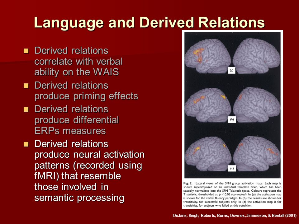 Language and Derived Relations Derived relations correlate with verbal ability on the WAIS Derived relations correlate with verbal ability on the WAIS Derived relations produce priming effects Derived relations produce priming effects Derived relations produce differential ERPs measures Derived relations produce differential ERPs measures Derived relations produce neural activation patterns (recorded using fMRI) that resemble those involved in semantic processing Derived relations produce neural activation patterns (recorded using fMRI) that resemble those involved in semantic processing Dickins, Singh, Roberts, Burns, Downes, Jimmieson, & Bentall (2001)