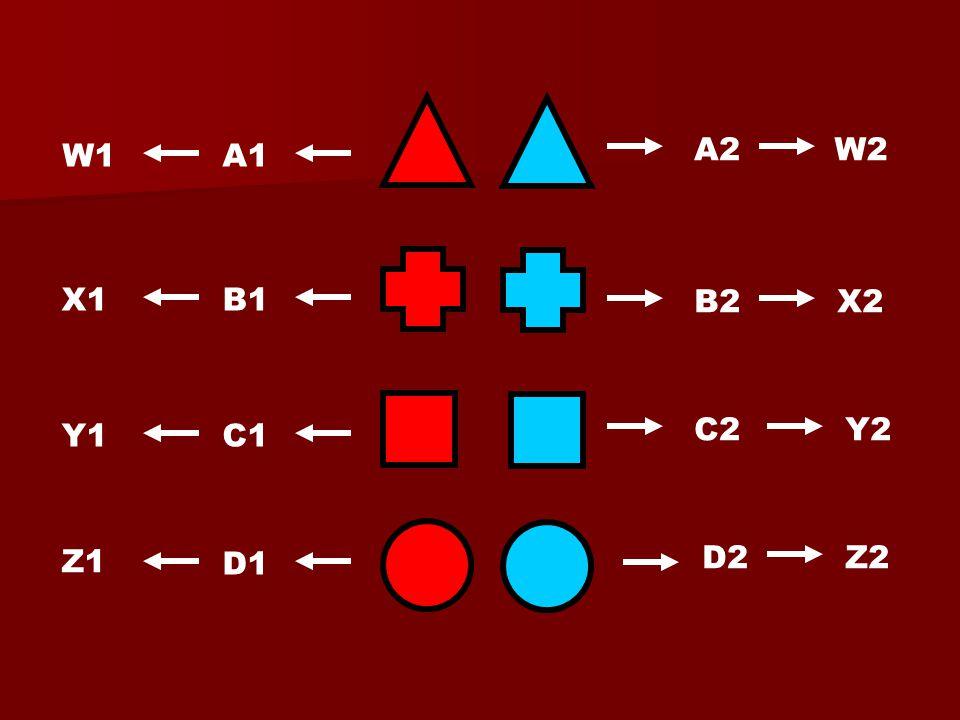 A1 D1 C1 B1 A2 B2 C2 D2 W2 X2 Y2 Z2 Z1 Y1 X1 W1