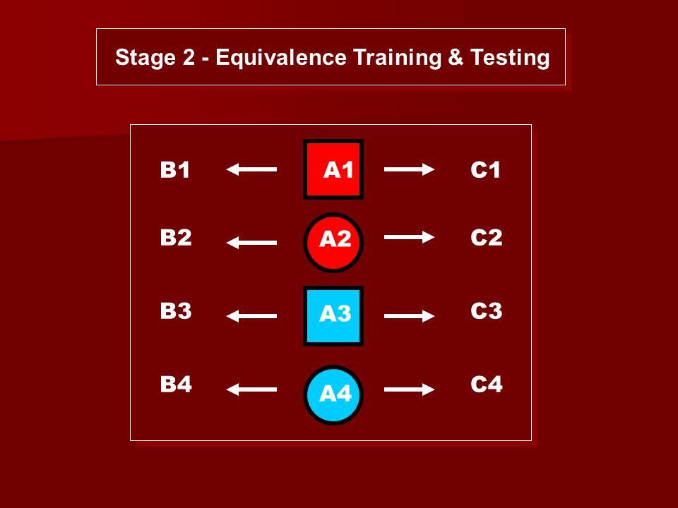 B1 B2 B3 B4 C1 C2 C3 C4 A1 A2 A3 A4 Stage 2 - Equivalence Training & Testing