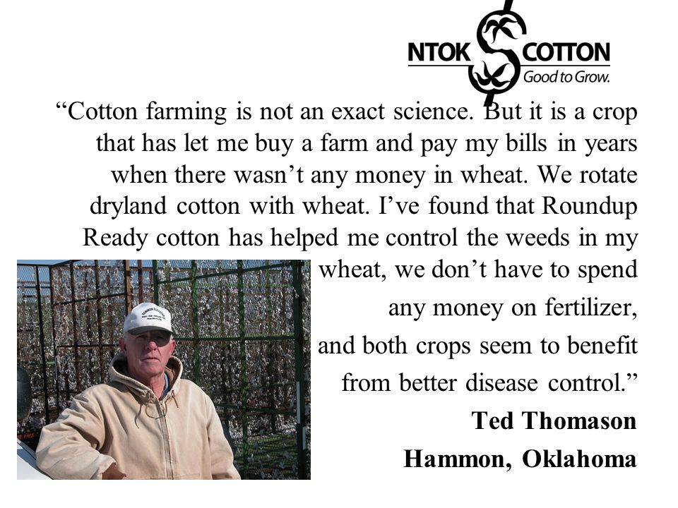 """""""Cotton farming is not an exact science. But it is a crop that has let me buy a farm and pay my bills in years when there wasn't any money in wheat. W"""