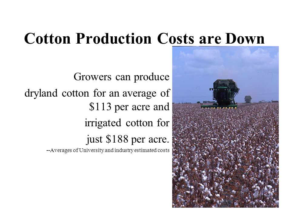 Cotton Production Costs are Down Growers can produce dryland cotton for an average of $113 per acre and irrigated cotton for just $188 per acre. --Ave