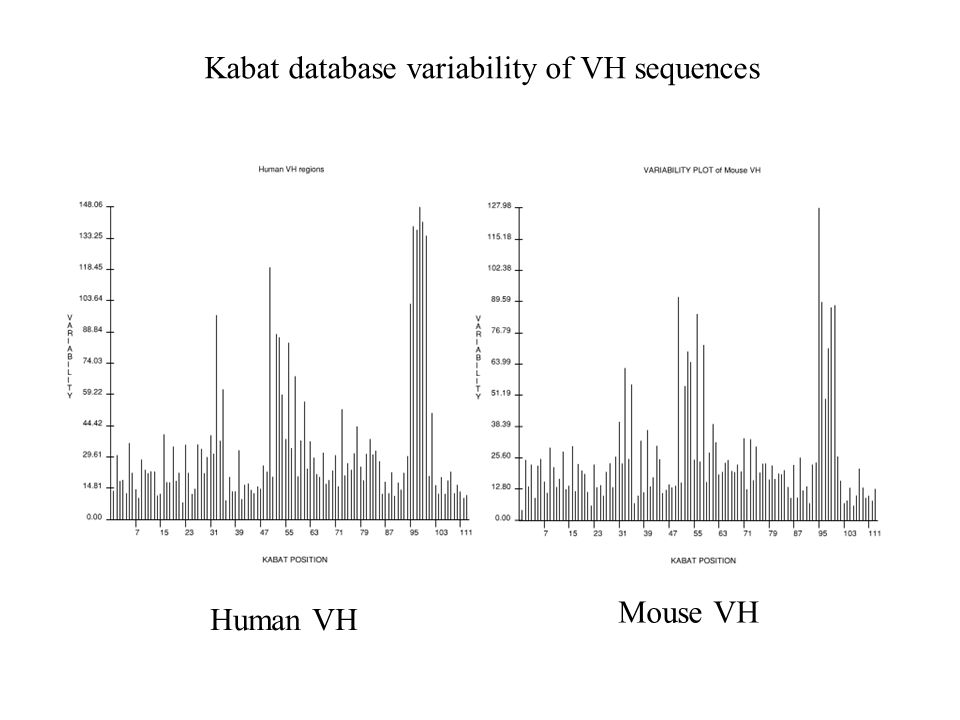 Kabat database variability of VH sequences Human VH Mouse VH