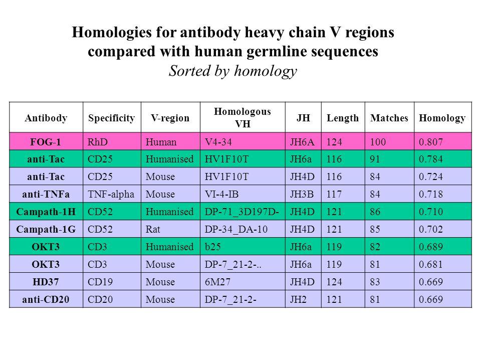 AntibodySpecificityV-region Homologous VH JHLengthMatchesHomology FOG-1RhDHumanV4-34JH6A1241000.807 anti-TacCD25HumanisedHV1F10TJH6a116910.784 anti-TacCD25MouseHV1F10TJH4D116840.724 anti-TNFaTNF-alphaMouseVI-4-IBJH3B117840.718 Campath-1HCD52HumanisedDP-71_3D197D-JH4D121860.710 Campath-1GCD52RatDP-34_DA-10JH4D121850.702 OKT3CD3Humanisedb25JH6a119820.689 OKT3CD3MouseDP-7_21-2-..JH6a119810.681 HD37CD19Mouse6M27JH4D124830.669 anti-CD20CD20MouseDP-7_21-2-JH2121810.669 Homologies for antibody heavy chain V regions compared with human germline sequences Sorted by homology