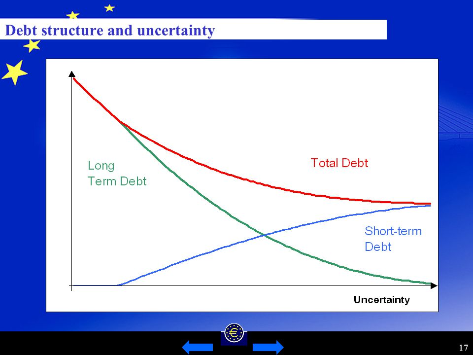 17 Debt structure and uncertainty