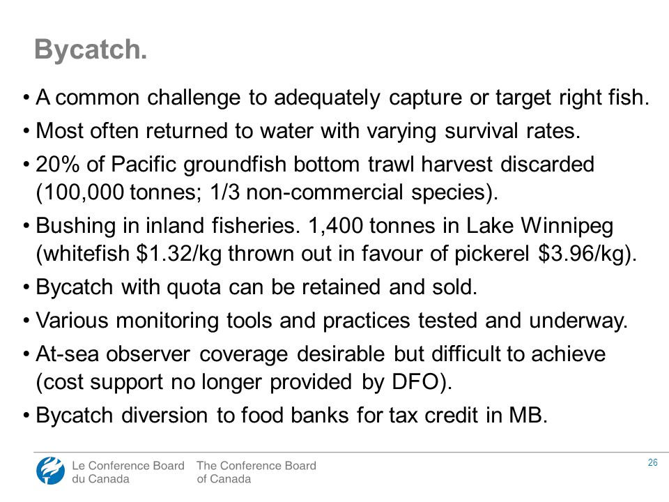 26 A common challenge to adequately capture or target right fish.