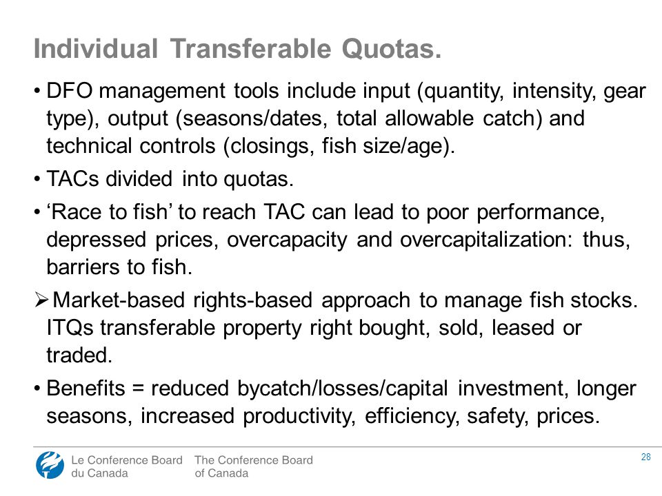28 DFO management tools include input (quantity, intensity, gear type), output (seasons/dates, total allowable catch) and technical controls (closings, fish size/age).