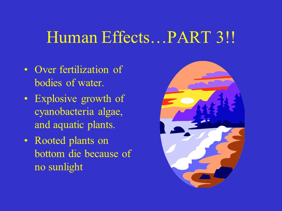 Human Effects…PART 3!.Over fertilization of bodies of water.