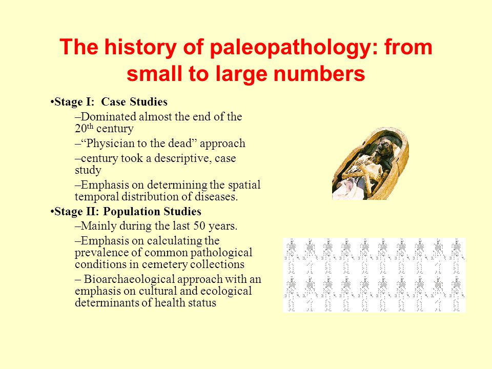 """The history of paleopathology: from small to large numbers Stage I: Case Studies –Dominated almost the end of the 20 th century –""""Physician to the dea"""
