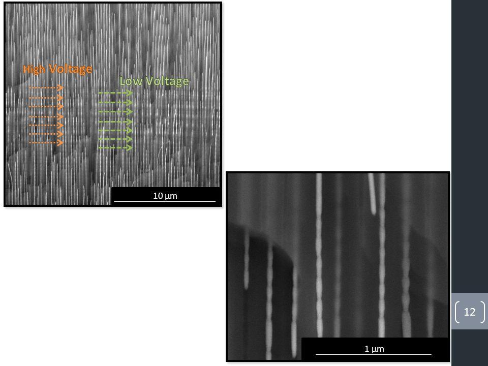 12 10 µm 1 µm