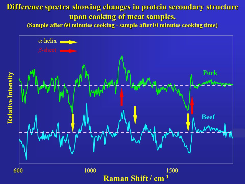 Difference spectra showing changes in protein secondary structure upon cooking of meat samples. (Sample after 60 minutes cooking - sample after10 minu
