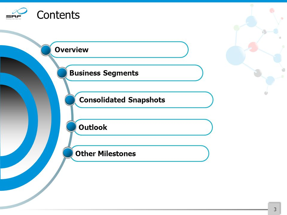 Contents 3 Consolidated Snapshots Business Segments Overview Outlook Other Milestones