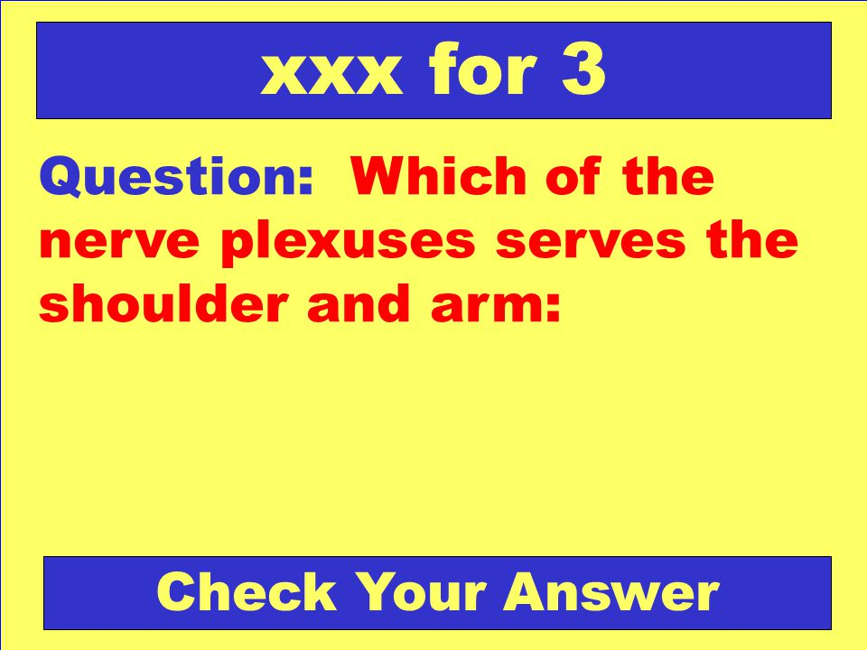 Question: Which of the nerve plexuses serves the shoulder and arm: xxx for 3 Check Your Answer
