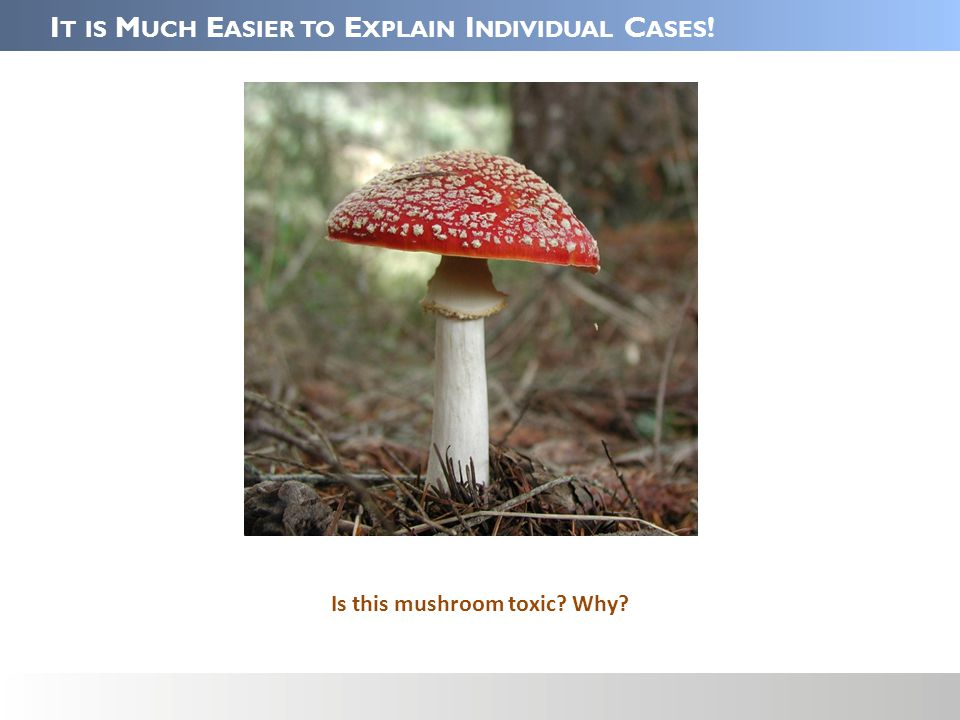 I T IS M UCH E ASIER TO E XPLAIN I NDIVIDUAL C ASES ! Is this mushroom toxic Why