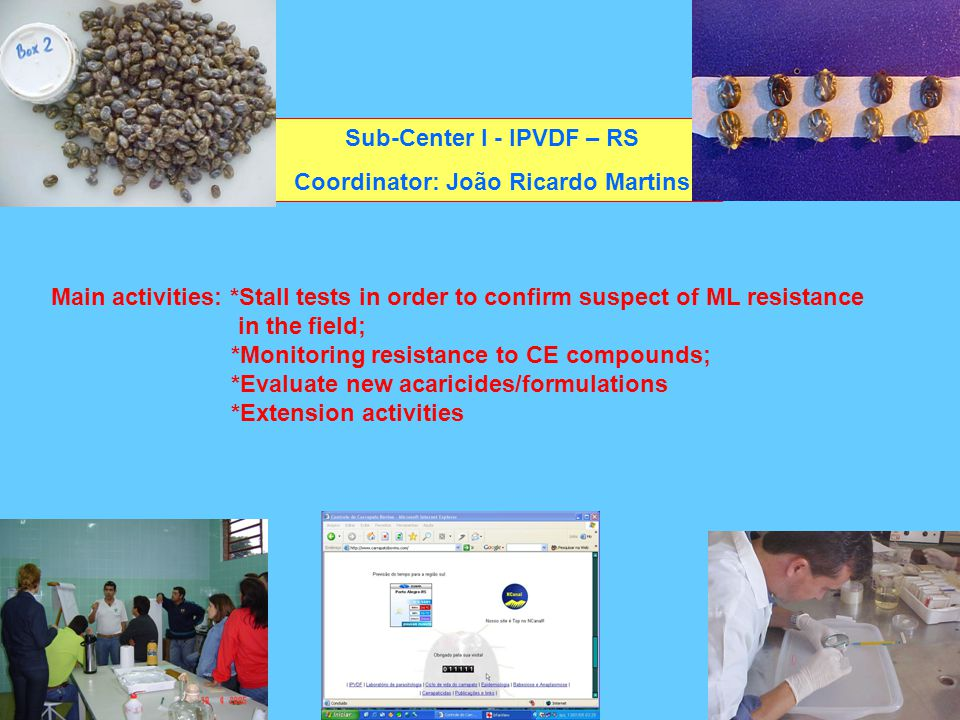 In 2005: At least 2 strong field evidence of ivermectin resistance -strain São João , municipality of Rio Pardo, RS -strain Bárbara , municipality of São Jerônimo, RS Sub-Center IPVDF – RS Coordinator: João Ricardo Martins Common points: -no dip tank in the farm -intensive use of LM