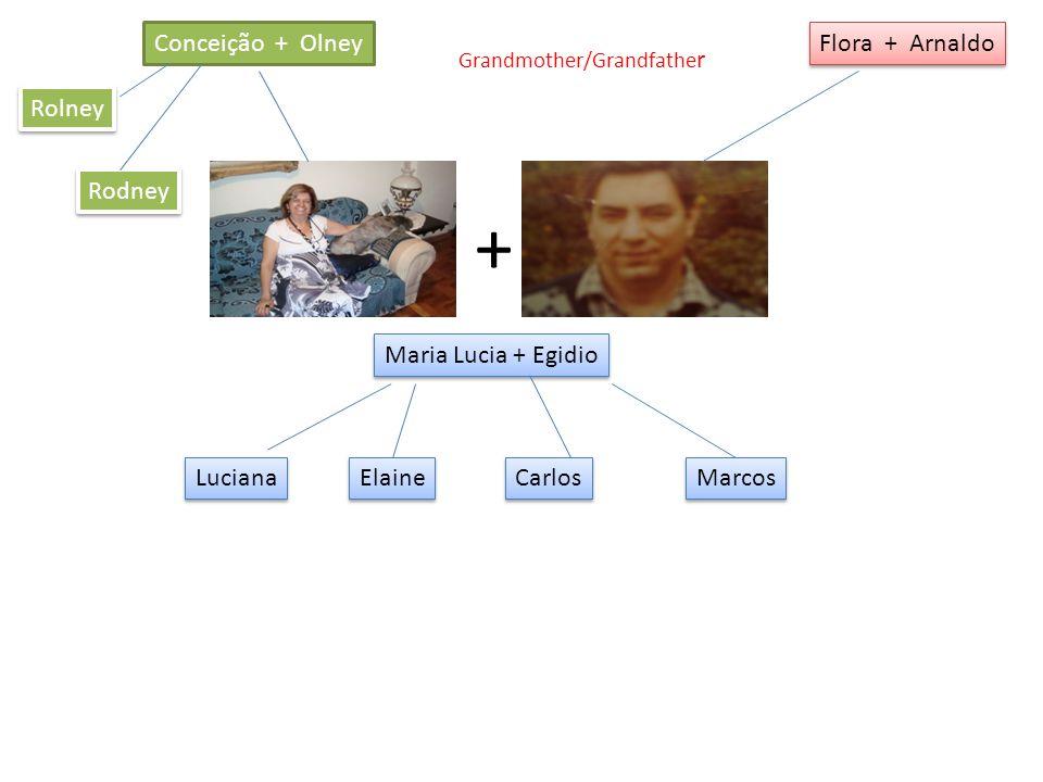 Conceição + Olney Flora + Arnaldo Maria Lucia + Egidio + Rodney Rolney Luciana Elaine Carlos Marcos Grandmother/Grandfathe r